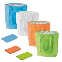 Large Folding Cool Bag